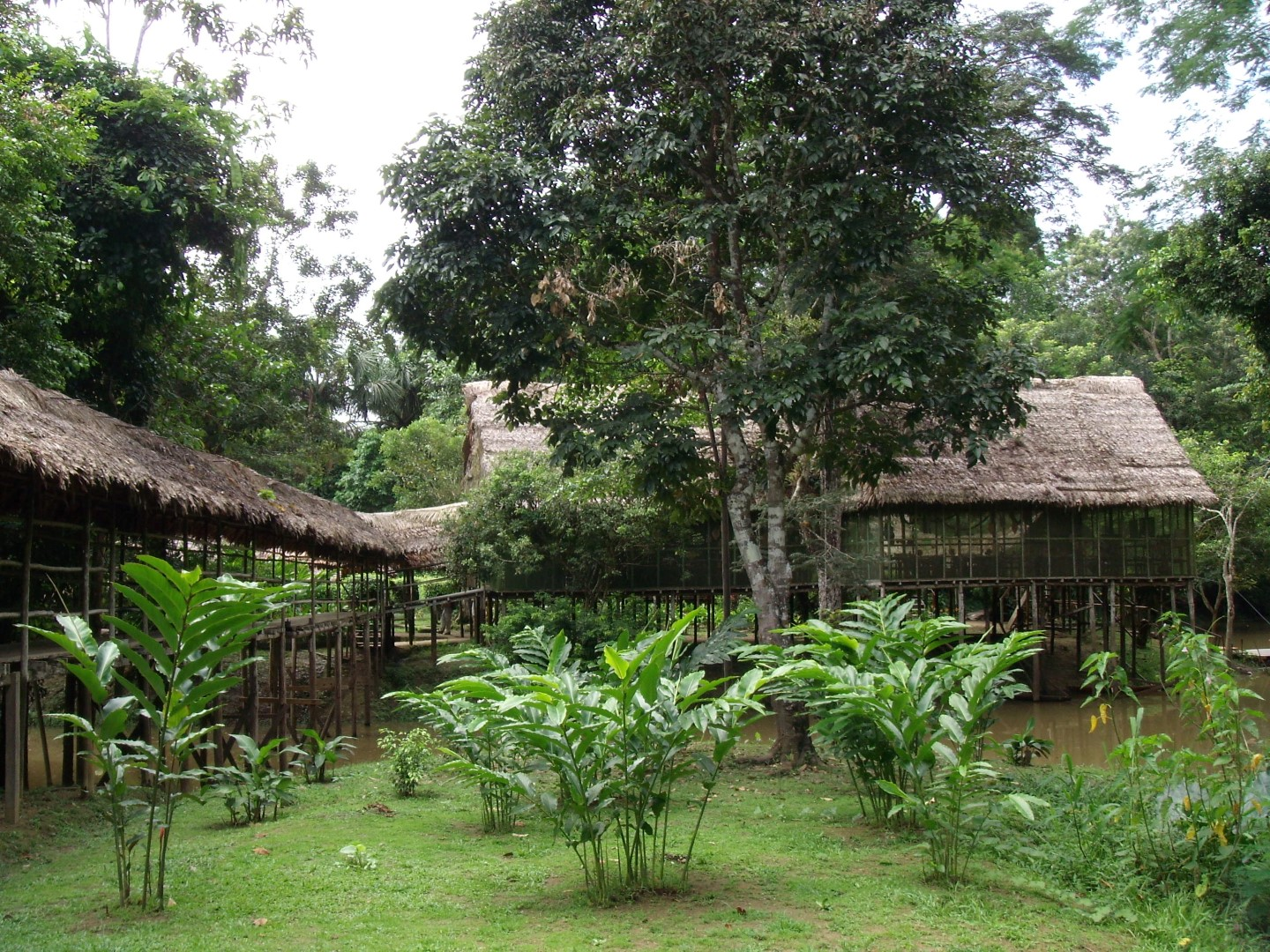 Explorama Lodge